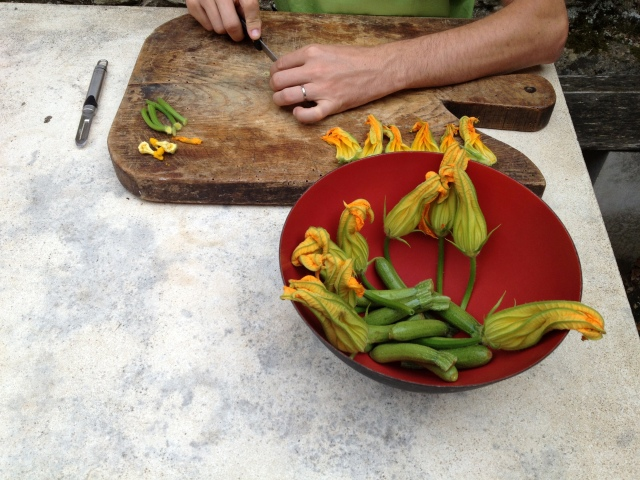 Jean Philippe coupe les fleurs de courgette